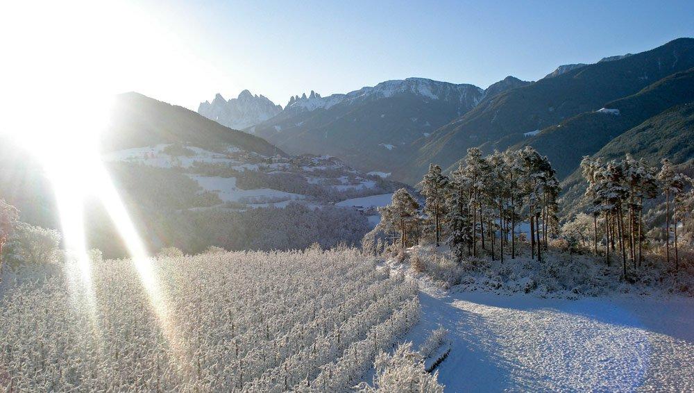 Attività invernali